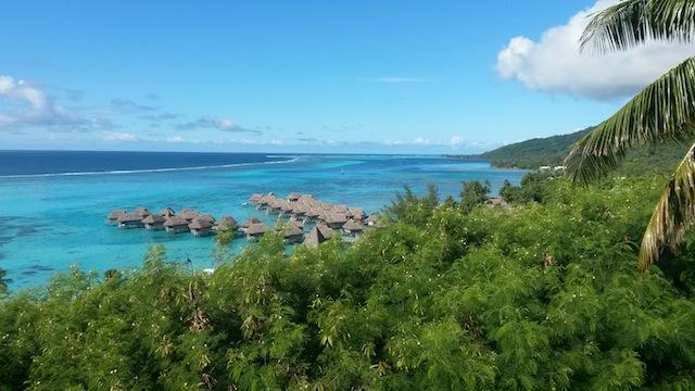KangarooTours-PolinesiaFrancesa_00