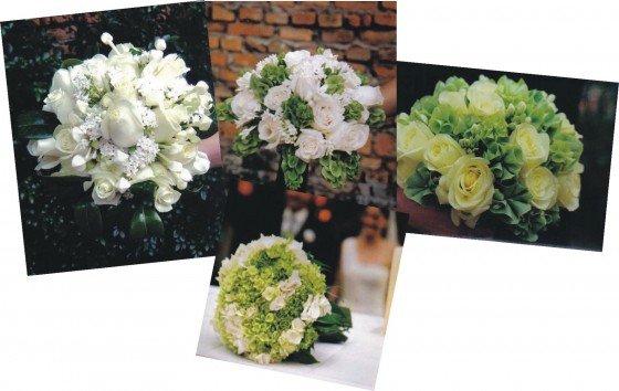 flowerpeoplebranco