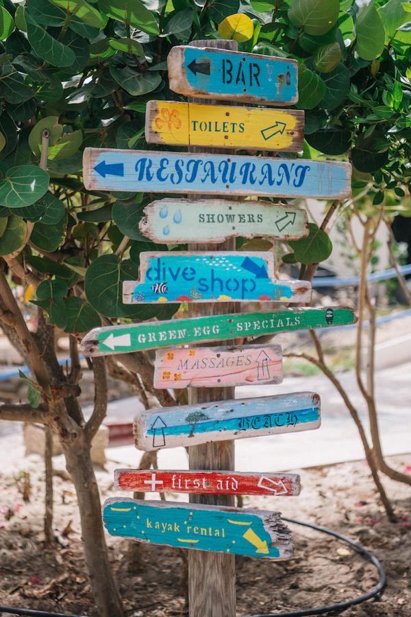 placas caribe
