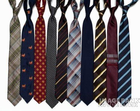 gravata